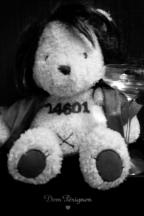 Jean Valjean teddy
