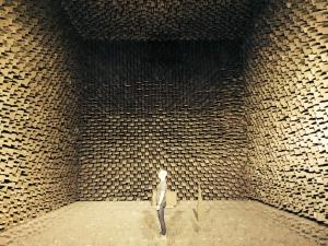Anechoic Chamber (c) Simon McBurney
